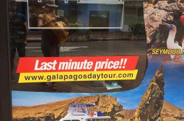 Les Galapagos sans se ruiner, mode d'emploi