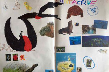 Les Galapagos vues par Diane