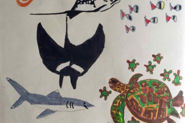 Les Galapagos vues par Alexis